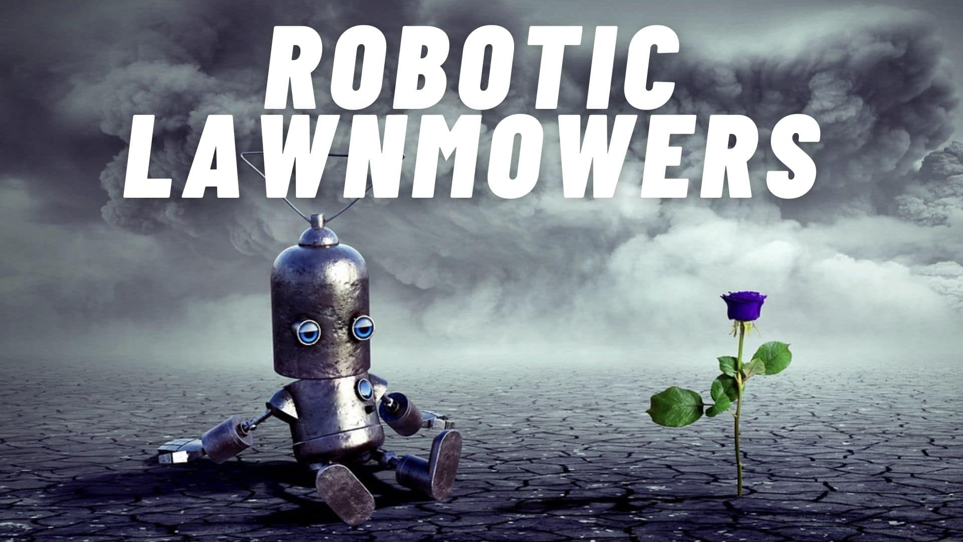 Robotic Lawnmowers and 2 Other Automations